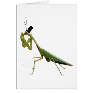 Gentleman Mantis Greeting Cards
