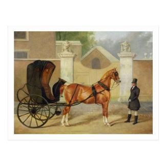 Gentlemen's Carriages: A Cabriolet, c.1820-30 (oil Postcard