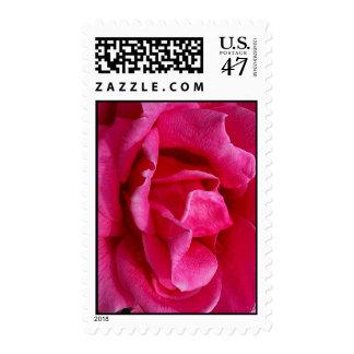 Gentleness Postage Stamp