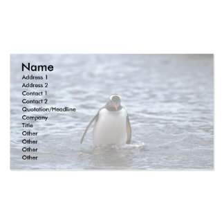 Gentoo Penguin Emerging From Sea Double-Sided Standard Business Cards (Pack Of 100)