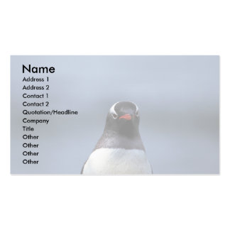 Gentoo Penguin (Head Shot) Double-Sided Standard Business Cards (Pack Of 100)