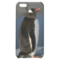 Gentoo Penguin iPhone 5C Case