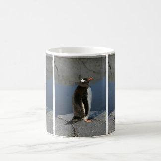 Gentoo Penguin Coffee Mug