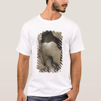 Gentoo Penguin (Pygoscelis papua) and chicks. T-Shirt