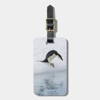 Gentoo penguin (Pygoscelis papua) Bag Tag