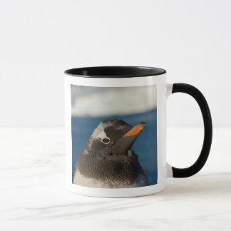 gentoo penguin, Pygoscelis Papua, chick along Mug