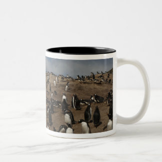 Gentoo Penguin (Pygoscelis papua) colony on West Two-Tone Coffee Mug