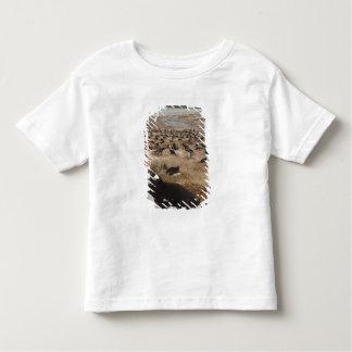 Gentoo Penguin (Pygoscelis papua) colony, West 2 Toddler T-shirt