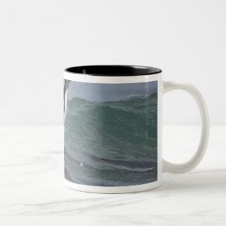 Gentoo Penguin Pygoscelis papua) coming in on Two-Tone Coffee Mug