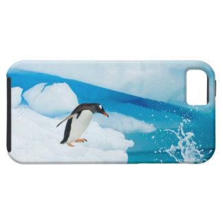gentoo penguin, Pygoscelis Papua, jumping off an iPhone SE/5/5s Case