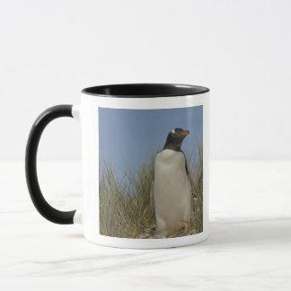 Gentoo Penguin (Pygoscelis papua), Keppel Mug