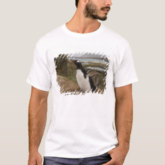 Gentoo Penguin (Pygoscelis papua) on a nest, T-Shirt