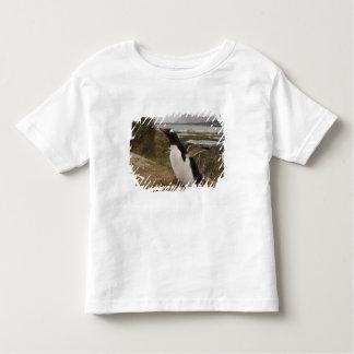 Gentoo Penguin (Pygoscelis papua) on a nest, Toddler T-shirt