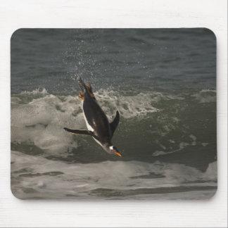 Gentoo Penguin (Pygoscelis papua) Sea Lion Mouse Pad