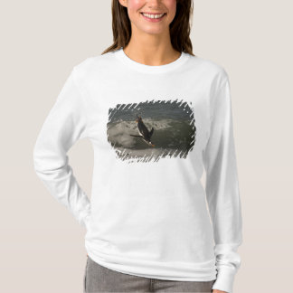 Gentoo Penguin (Pygoscelis papua) Sea Lion T-Shirt