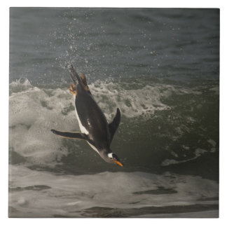 Gentoo Penguin (Pygoscelis papua) Sea Lion Tile