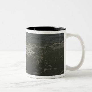 Gentoo Penguin (Pygoscelis papua) Sea Lion Two-Tone Coffee Mug