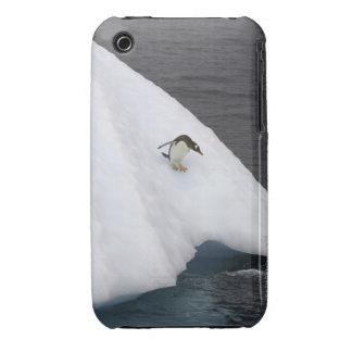 Gentoo penguin Pygoscelis papua) standing Case-Mate iPhone 3 Case