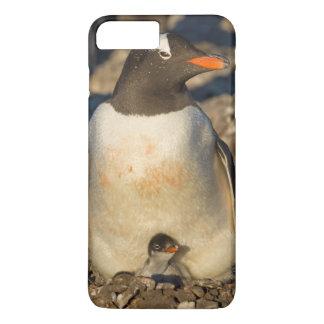 gentoo penguin, Pygoscelis papua, with newborn iPhone 8 Plus/7 Plus Case