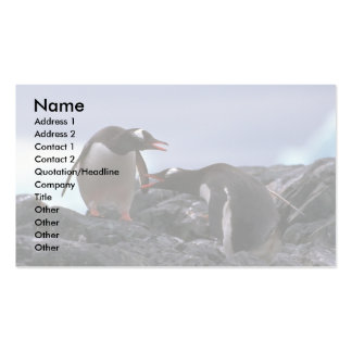 Gentoo Penguins Greeting At Nest Double-Sided Standard Business Cards (Pack Of 100)