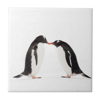 Gentoo Penguins Kissing - tile