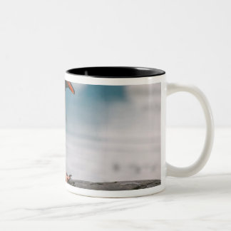 Gentoo penguins on rocky shoreline with backdrop 3 Two-Tone coffee mug