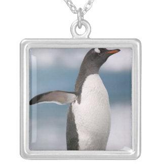 Gentoo penguins on rocky shoreline with backdrop custom necklace