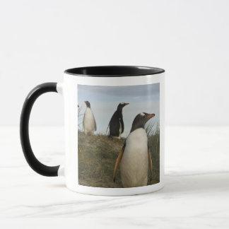 Gentoo Penguins (Pygoscelis papua), Keppel Mug