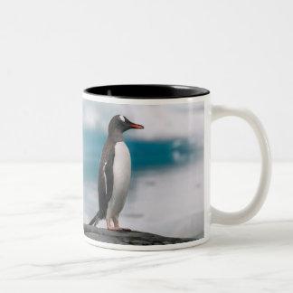 Gentoo penguins Pygoscelis papua on rocky Two-Tone Coffee Mug