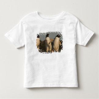 Gentoo Penguins Pygoscelis papua) on Sea Lion Toddler T-shirt