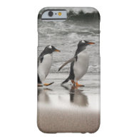 Gentoos on the beach barely there iPhone 6 case