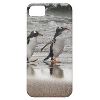 Gentoos on the beach iPhone SE/5/5s case
