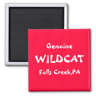 Genuine, WILDCAT, Falls Creek,PA 2 Inch Square Magnet