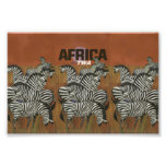 Genuine Zebra Vintage Poster Africa Travel Photo Print