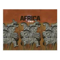 Genuine Zebra Vintage Poster Africa Travel Postcard
