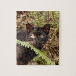 geoffroy-cat-007 puzzles