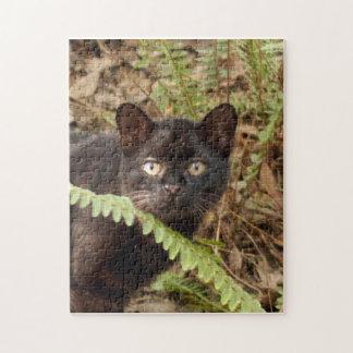 geoffroy-cat-007 puzzle