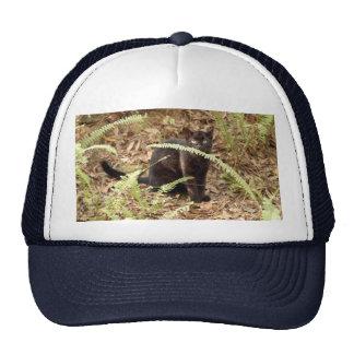 geoffroy-cat-008 trucker hat