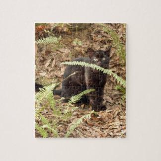 geoffroy-cat-008 puzzles