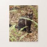 geoffroy-cat-008 rompecabezas con fotos