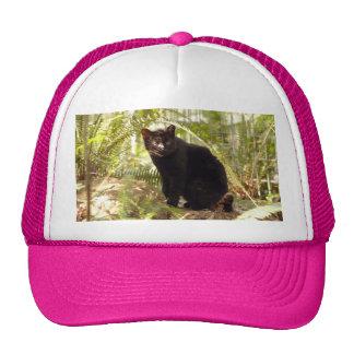 geoffroy-cat-010 trucker hat