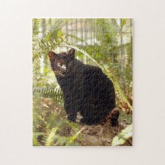 geoffroy-cat-010 rompecabeza con fotos
