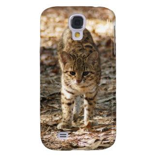 geoffroy-cat-012
