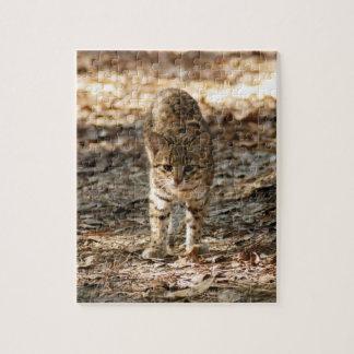 geoffroy-cat-012 rompecabeza