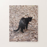 geoffroy-cat-015 puzzle