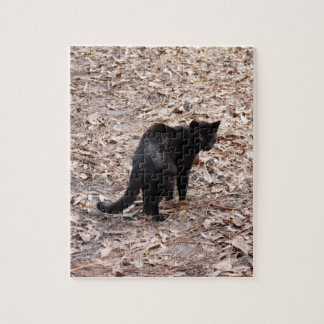 geoffroy-cat-015 rompecabeza