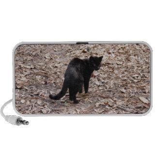 geoffroy-cat-015 travelling speaker