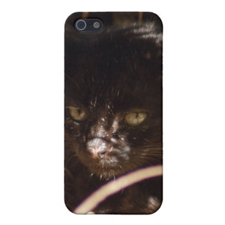 geoffroy-cat-016 iPhone 5 carcasa