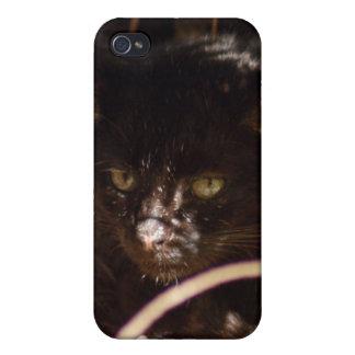 geoffroy-cat-016 iPhone 4/4S funda