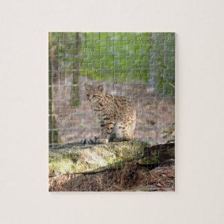 geoffroy-cat-018 puzzles